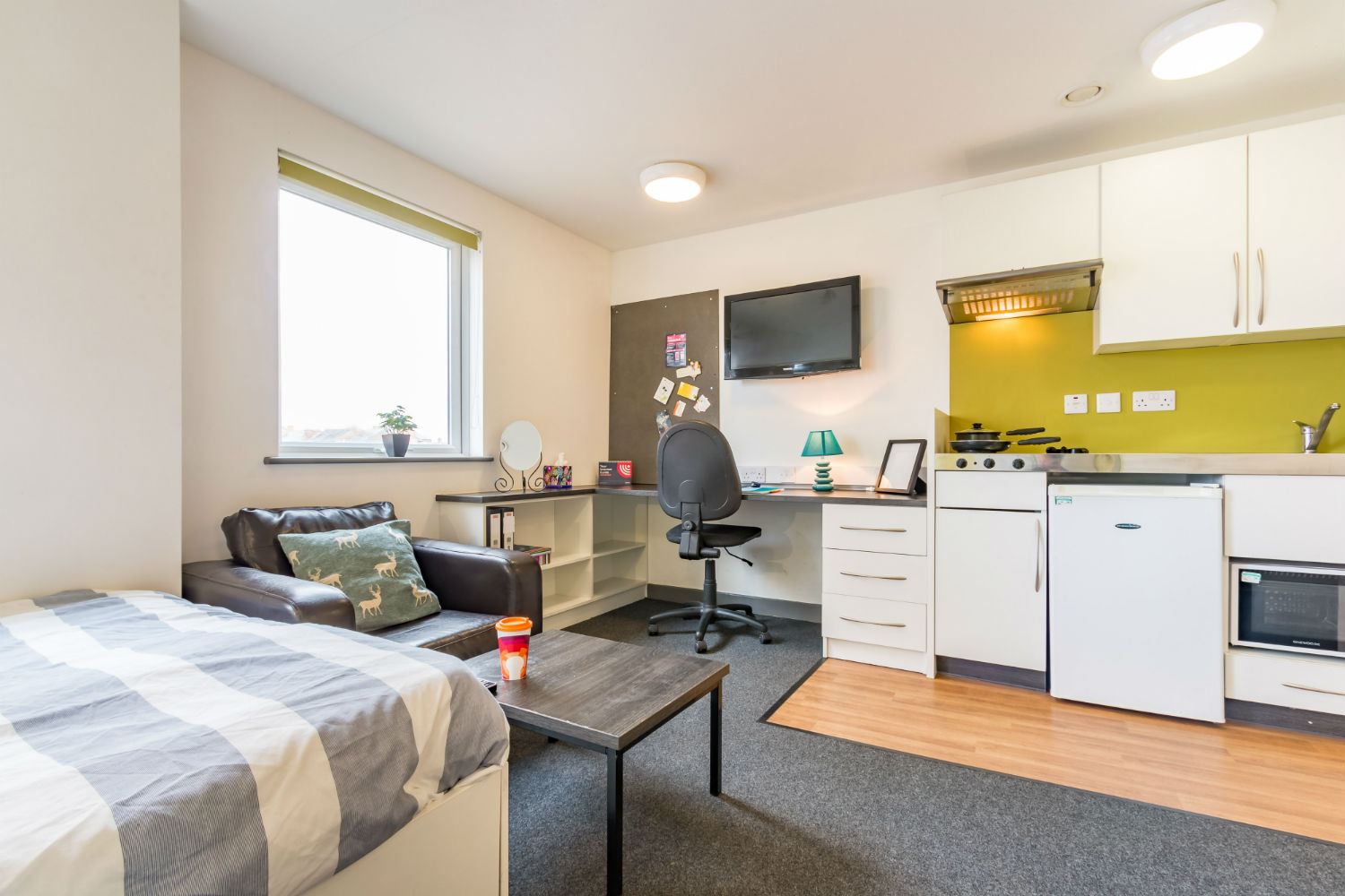 Large studio at Russell View Nottingham