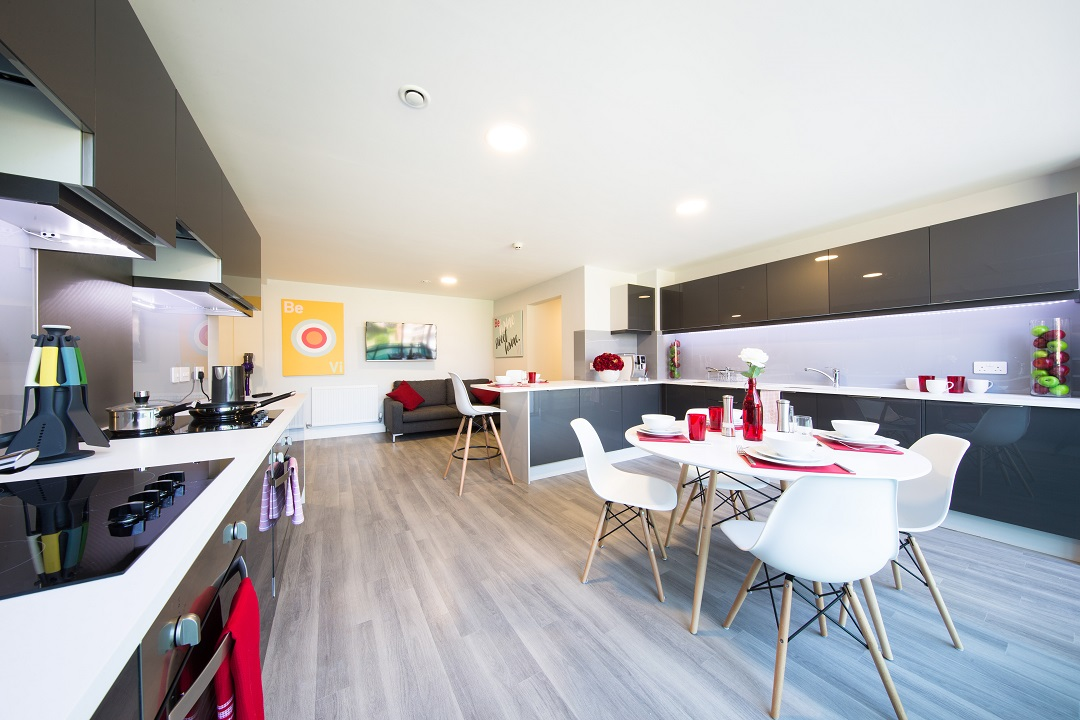 Cluster Flat Kitchen at ViBe Student Living